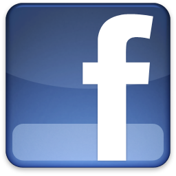 Facebook Fans